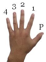Guitar chord fingering